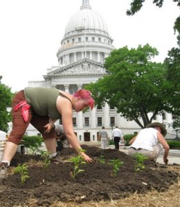 Planting at the Capitol