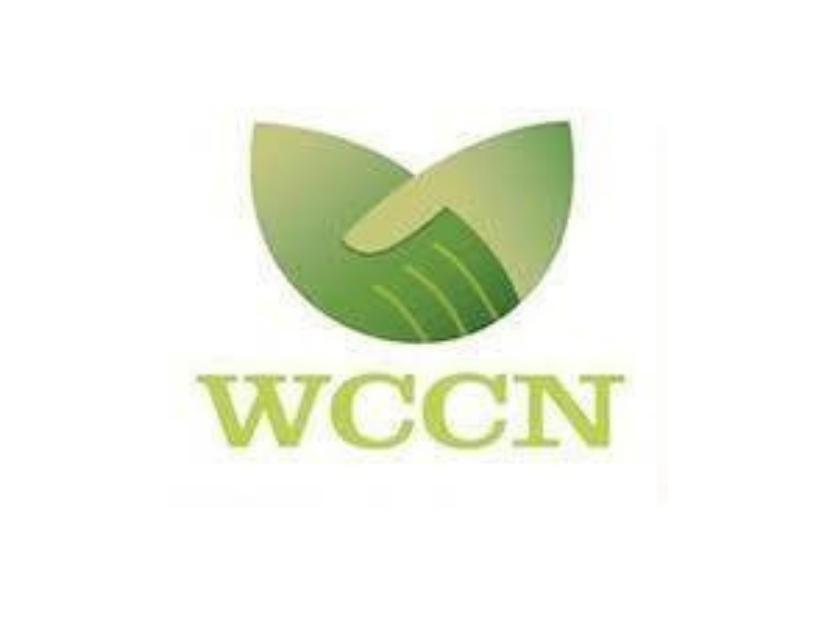 WCCN: using microloans to turn seashells into sand dollars